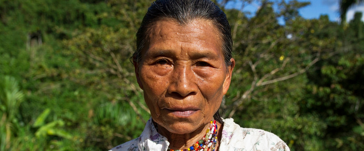 COVID-19 Response for the self-protection of Indigenous peoples in the Talamanca Rainforest